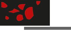Weingut Judith Beck Logo